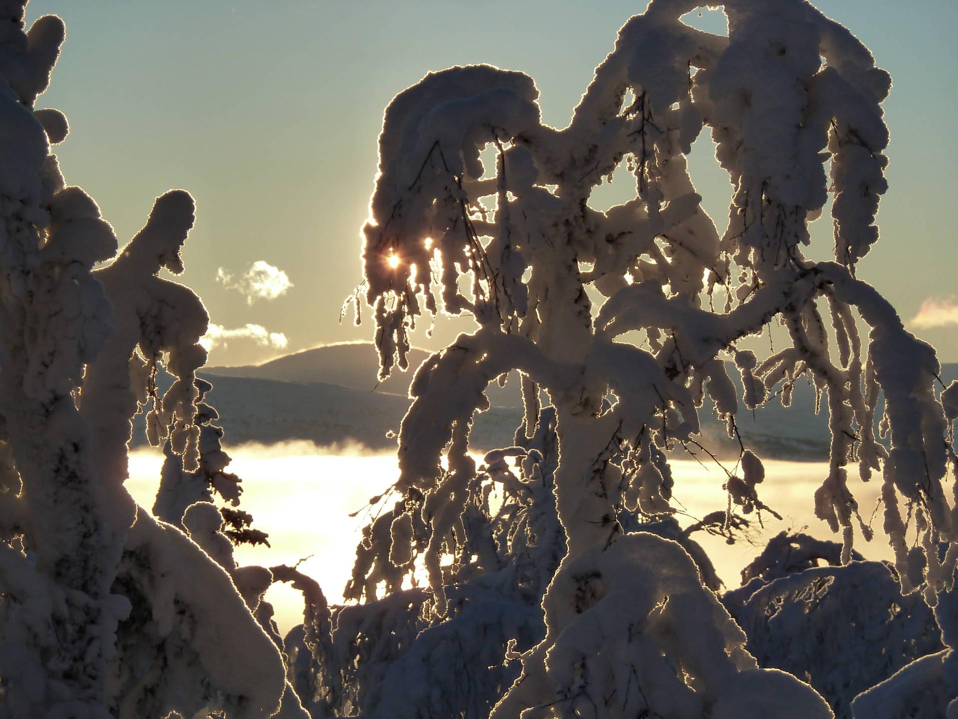 Turåkning i Södra Åre fjällen med besök i igloo. Renfjällsturen